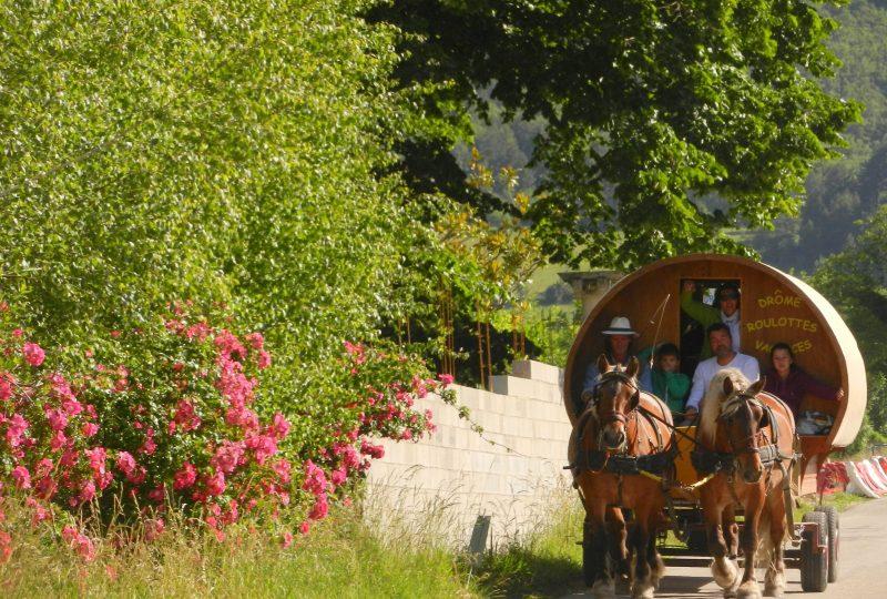 six-day  trip in horse drawn caravane à Le Poët-Célard - 5