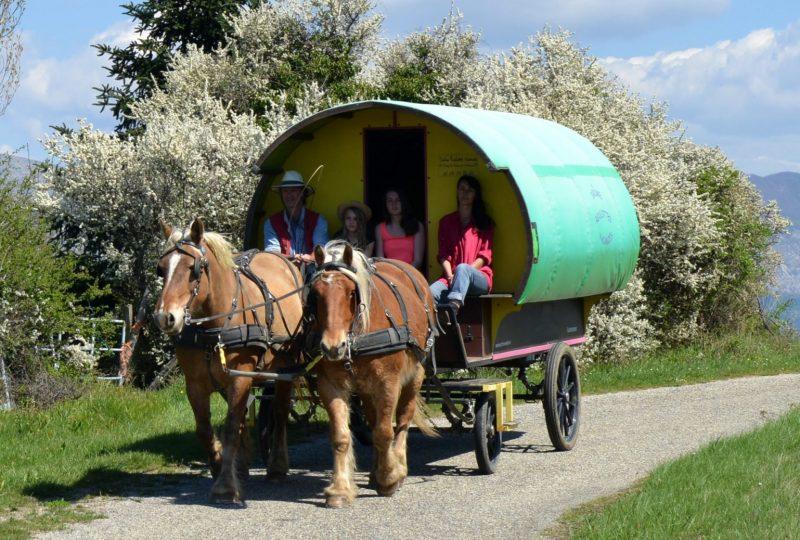 Viertägiger Urlaub im Pferdewagen in Drôme à Le Poët-Célard - 6