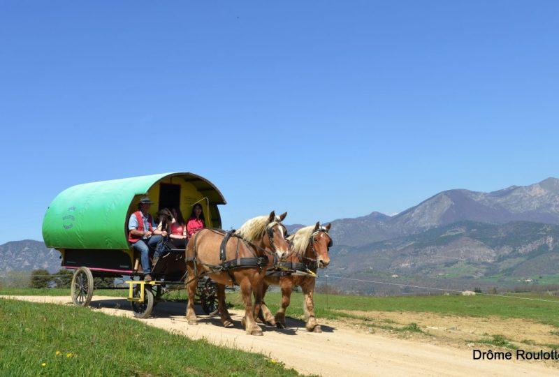 Une semaine de bohème en roulotte tirée par des chevaux à Le Poët-Célard - 4