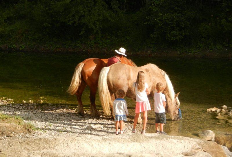 Your holidays in a horse-drawn caravan à Le Poët-Célard - 4
