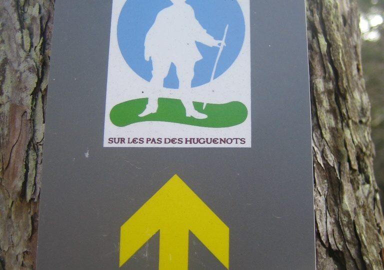 Sur les traces des Huguenots à Dieulefit - 5