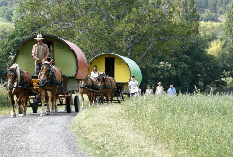 six-day  trip in horse drawn caravane à Le Poët-Célard - 1