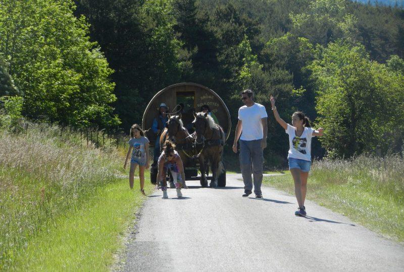 six-day  trip in horse drawn caravane à Le Poët-Célard - 2