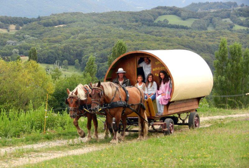 six-day  trip in horse drawn caravane à Le Poët-Célard - 3