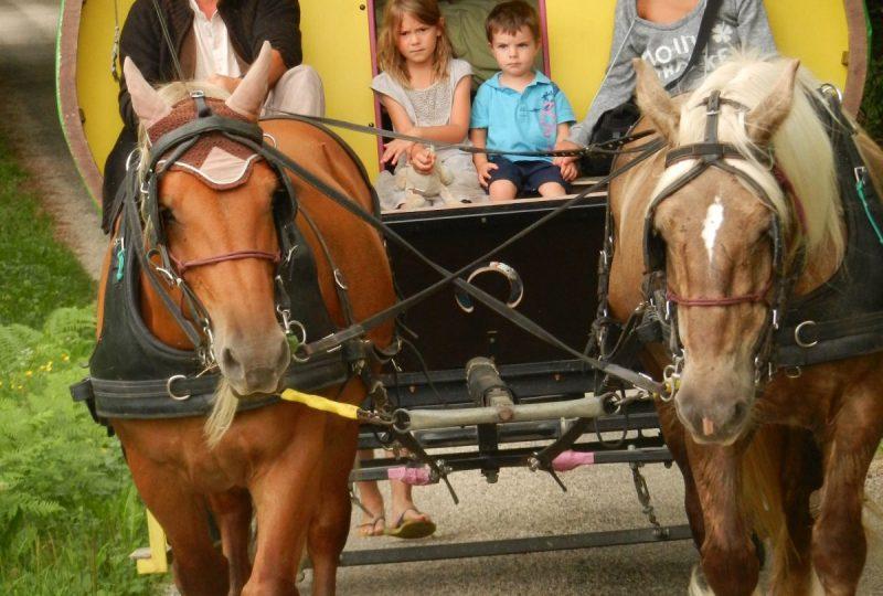 six-day  trip in horse drawn caravane à Le Poët-Célard - 4