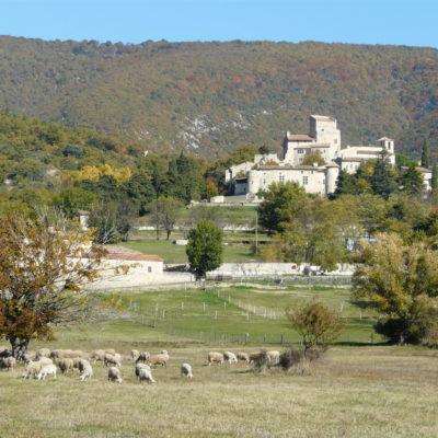 Village médiéval- perché -Le Poët-laval - prairies - moutons