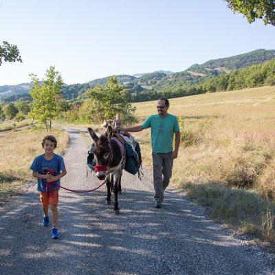 Randonnée famille avec animaux - âne baté