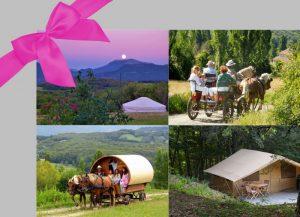 Bon cadeau - slow tourisme - caleche - roulotte - glamping