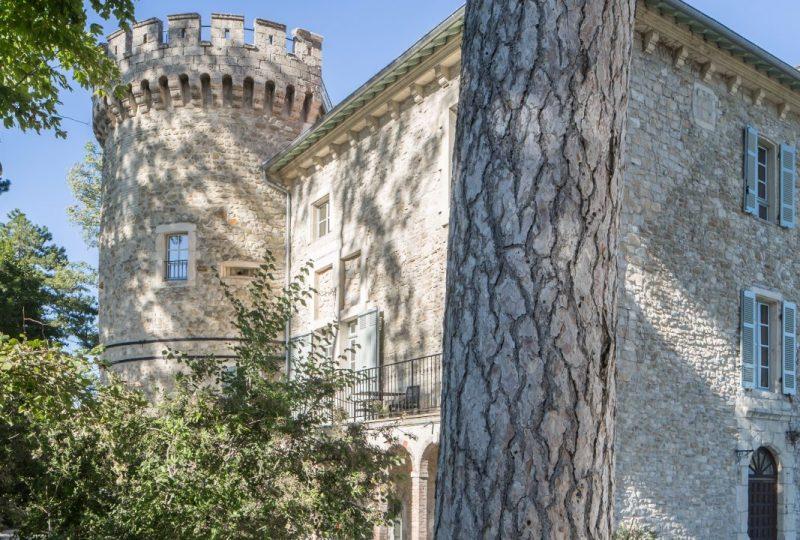 Restaurant Château les Oliviers de Salettes à Charols - 9