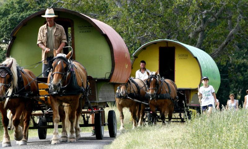 «L'Escapade» : 3 circuits et 3 nuits en roulotte itinérante avec chevaux et meneur à Le Poët-Célard - 0