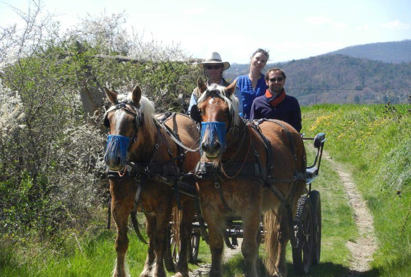 Promenade en calèche pour tous autour du massif du Couspeau à Le Poët-Célard - 1