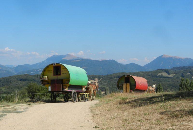 Séjour bohème : 5 jours en roulotte tirée par des chevaux à Le Poët-Célard - 1
