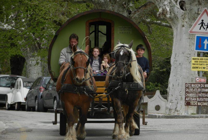 Séjour bohème : 5 jours en roulotte tirée par des chevaux à Le Poët-Célard - 2
