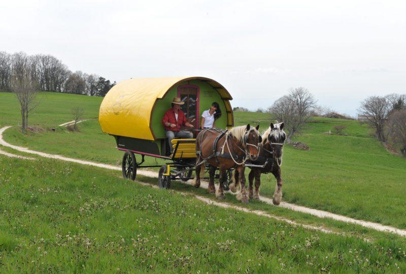 «Grain de Bohème» : 2 jours en roulotte tirée par des chevaux à Le Poët-Célard - 7