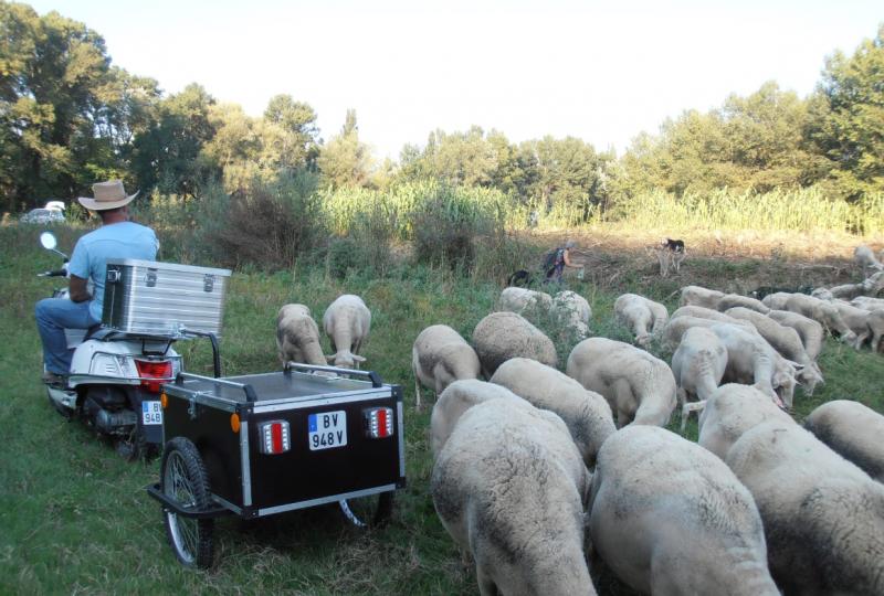 De ferme en ferme : en scooter le nez en l'air ! à Marsanne - 15