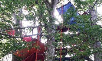 arkad'arbre – Pont de barret