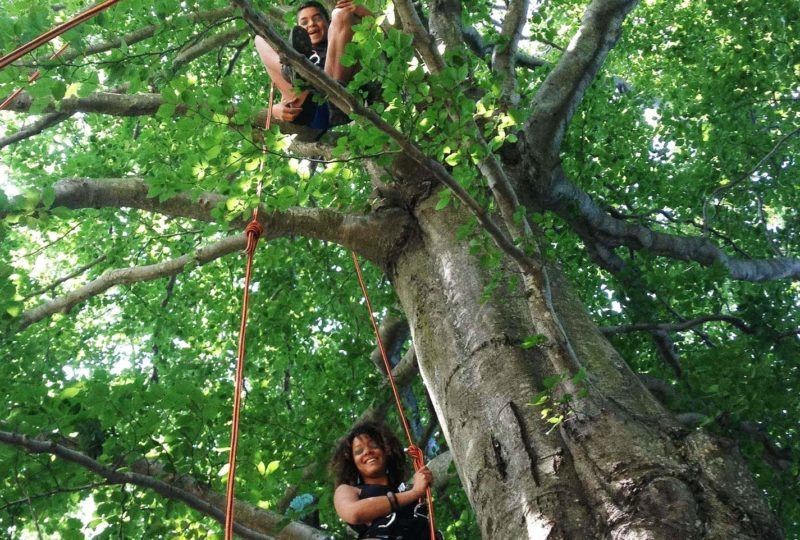 Grimpe d'arbre – ArKad'Arbre – Magali GREZ à Pont-de-Barret - 1
