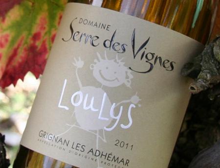 Domaine du Serre des Vignes à Roche-Saint-Secret-Béconne - 1