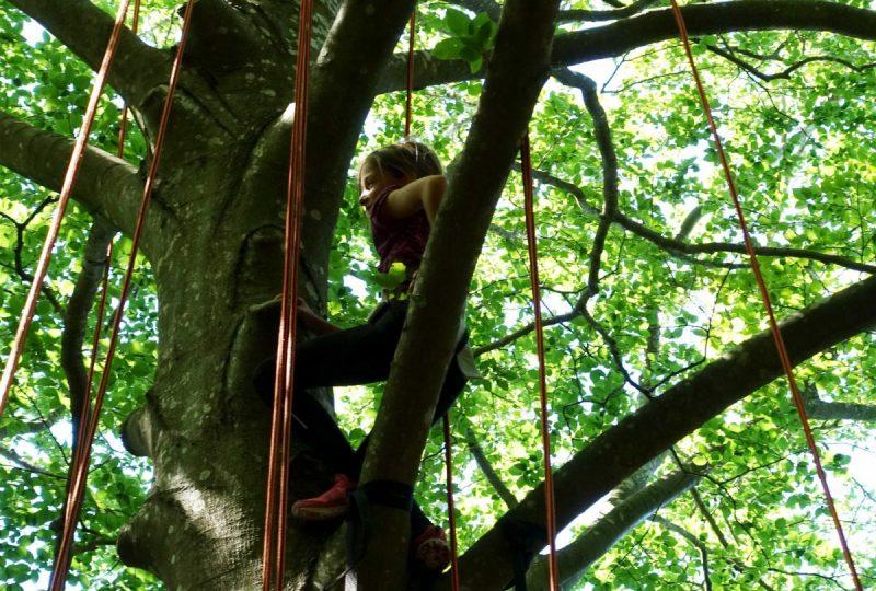 Grimpe d'arbre – ArKad'Arbre – Magali GREZ à Pont-de-Barret - 2