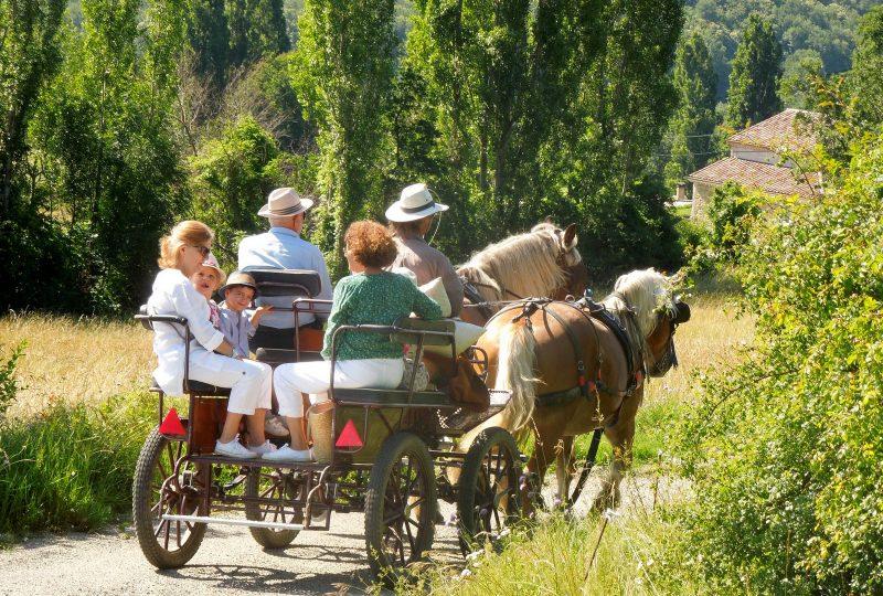 Promenade en calèche pour tous autour du massif du Couspeau à Le Poët-Célard - 0