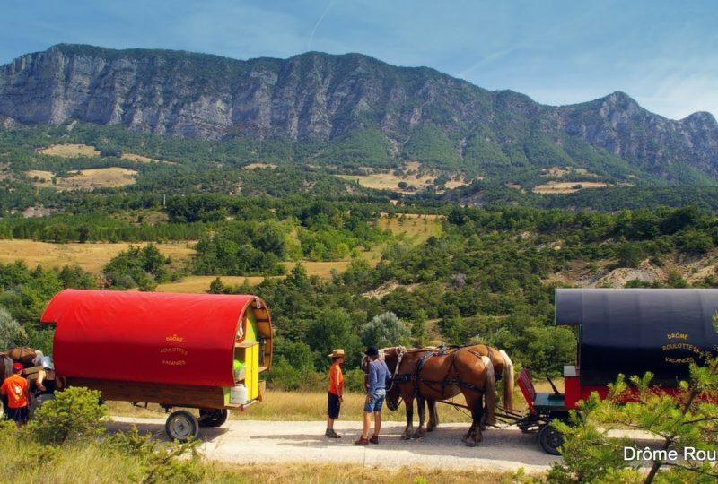 «Petite bohème» : 4 jours en roulotte tirée par des chevaux à Le Poët-Célard - 0
