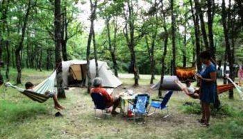 Aire Naturelle Tzig'Ane – Bourdeaux