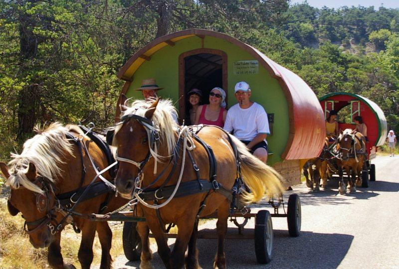 «Grain de Bohème» : 2 jours en roulotte tirée par des chevaux à Le Poët-Célard - 1