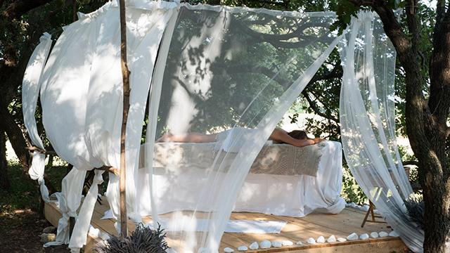 Massage au coeur des champs de lavande. L'essentiel de Lavande à La Bégude-de-Mazenc - 0