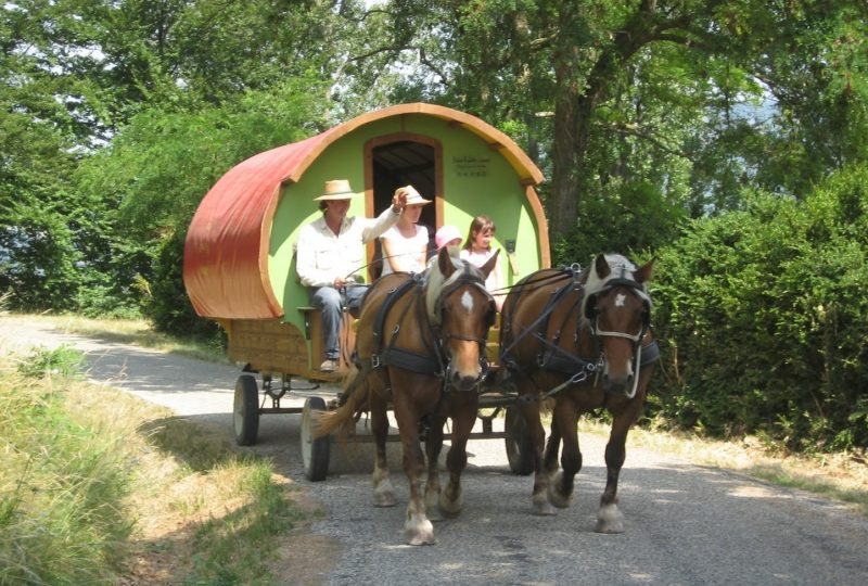 Vacances en roulotte itinérante avec chevaux et meneur à Le Poët-Célard - 0