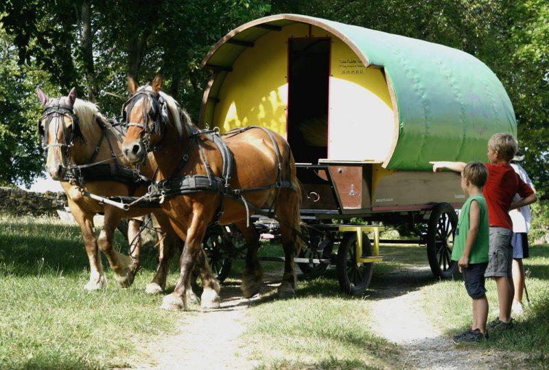 Vacances en roulotte itinérante avec chevaux et meneur à Le Poët-Célard - 1
