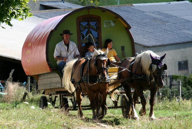 Vacances en roulotte itinérante avec chevaux et meneur à Le Poët-Célard - 3