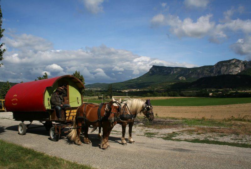 Vacances en roulotte itinérante avec chevaux et meneur à Le Poët-Célard - 6