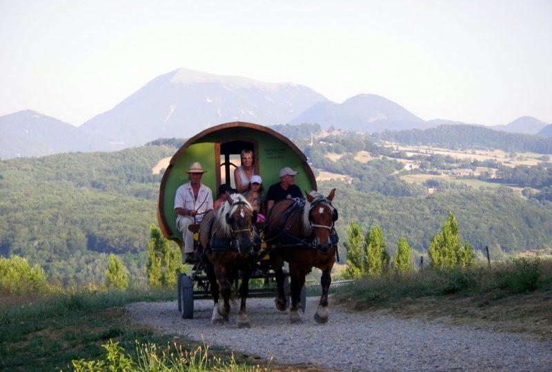 Vacances en roulotte itinérante avec chevaux et meneur à Le Poët-Célard - 7