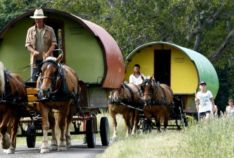 Vacances en roulotte itinérante avec chevaux et meneur à Le Poët-Célard - 13