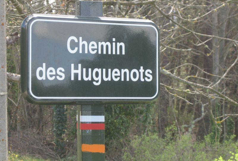 Sur les traces des Huguenots à Dieulefit - 4