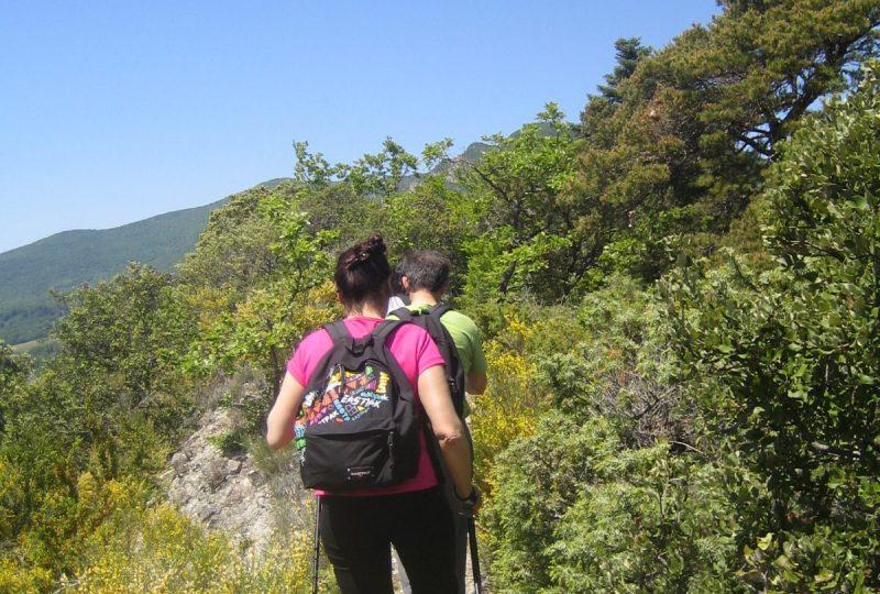 5 Jours de randonnée en pays de Dieulefit à Dieulefit - 8