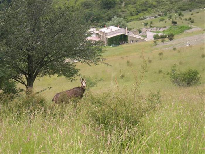 5 Jours de randonnée en pays de Dieulefit à Dieulefit - 5